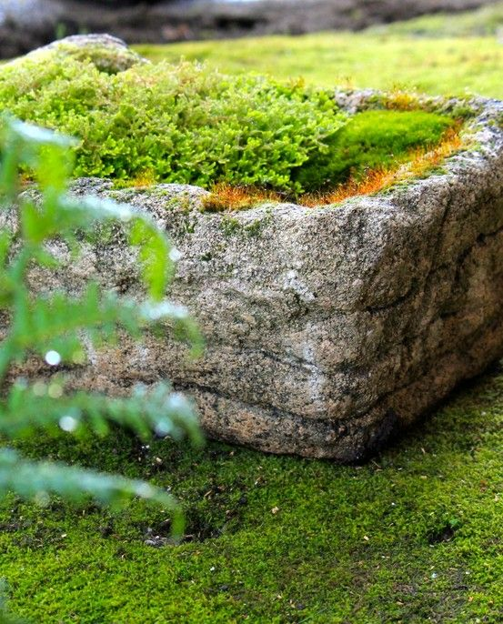 Stones Stone Planters And Pots On Pinterest