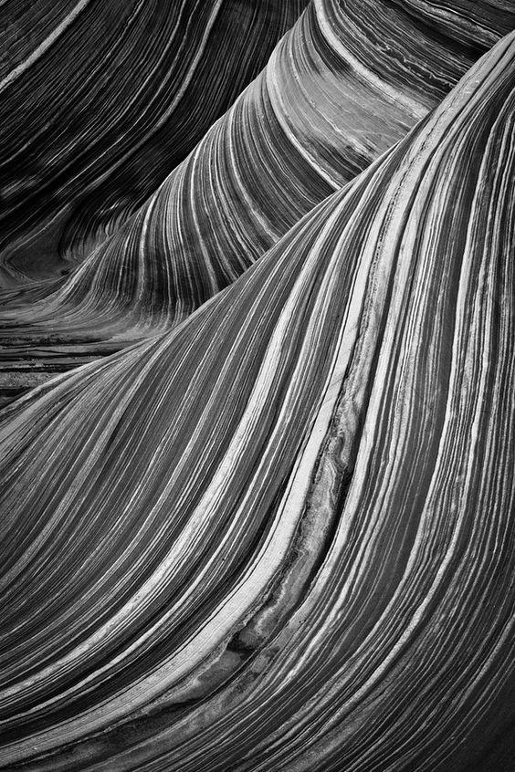The Wave - Adam Schallau