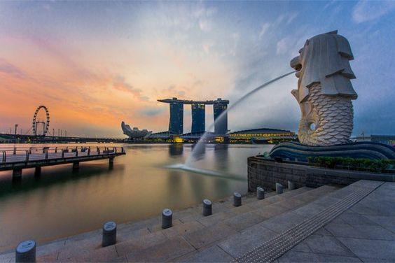 Sư tử biển biểu tượng của đảo quốc Singapore xinh đẹp