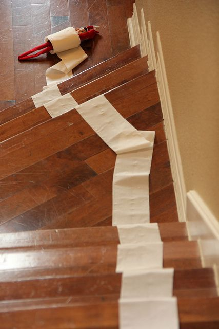 Elf rolls downstairs in a toilet paper tube