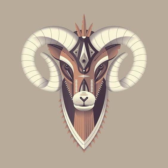 Bighorn Sheep by Matt Anderson - Skillshare