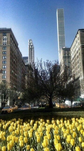 New York by Virgen Morales