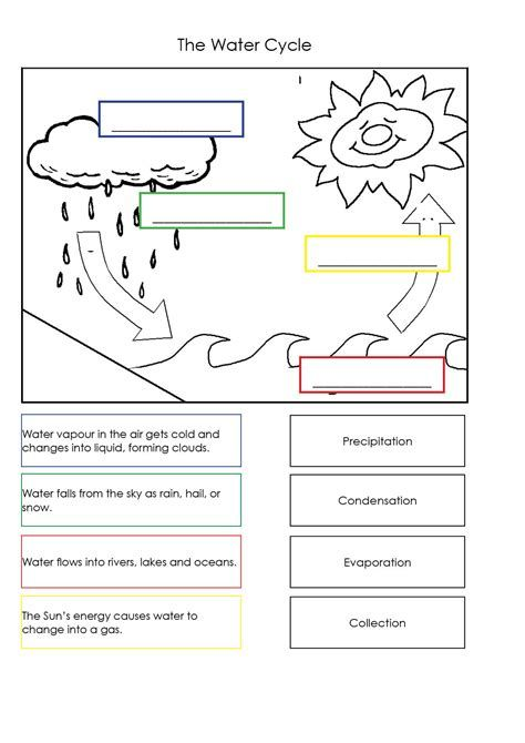 Water Cycle Worksheets For Kids Free Yahoo Image Search Results Water Cycle Worksheet Water Cycle Water Cycle Diagram