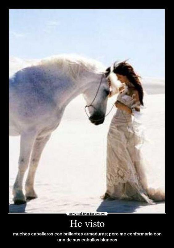 carteles caballos desmotivaciones