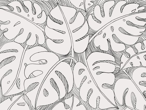 Pam Lostracco - Illustration