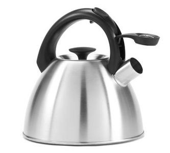tea kettles kettle rust how to remove to remove stainless steel steel. Black Bedroom Furniture Sets. Home Design Ideas