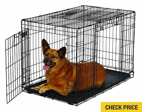 Best Dog Crates Reviews Dog Crate Dog Accessories Dogs