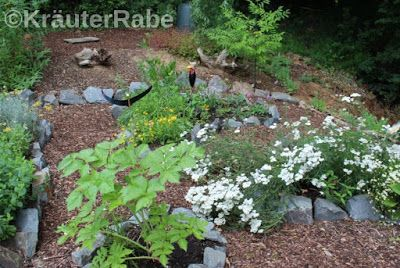 Kräutergarten im Juli
