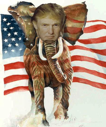 Image result for trump as elephant