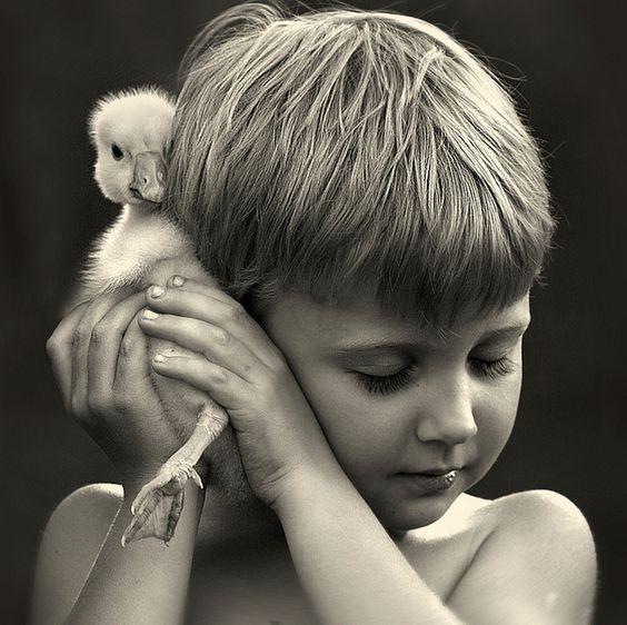 Mãe monta série fotográfica de seus filhos interagindo com animais