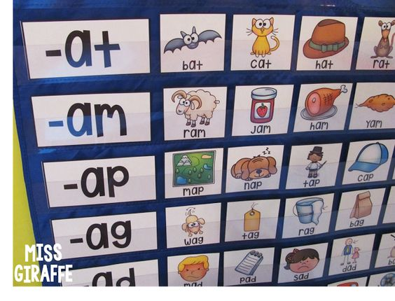 Number Names Worksheets teaching resources for kindergarten : The shorts, Student-centered resources and Phonics activities on ...