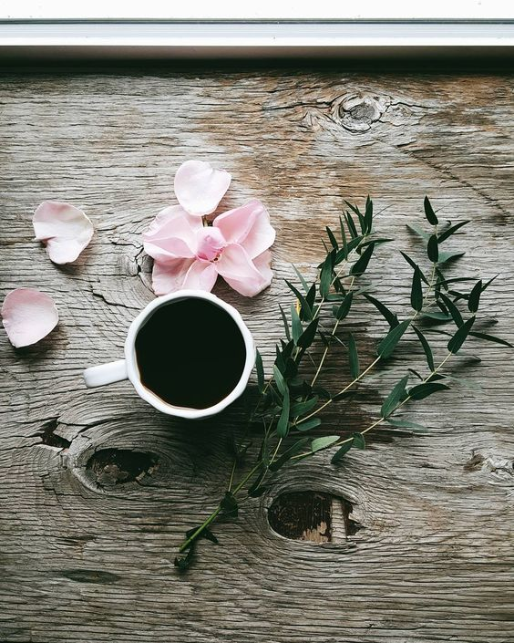 thisinsignificantlife:  simply-divine-creation:  Jules @julie_cali  When I have coffee each morning, there are never strewn petals and branches about. I feel robbed.