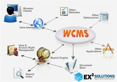 Professional Web Content Management System Development Wcms Dedicated To Effectively Maintaing Content Management System Innovation Design Design Development