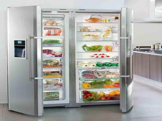 Full Fridge And Freezer Full Size Refrigerator And Freezer With The Vegeteble Kitchens
