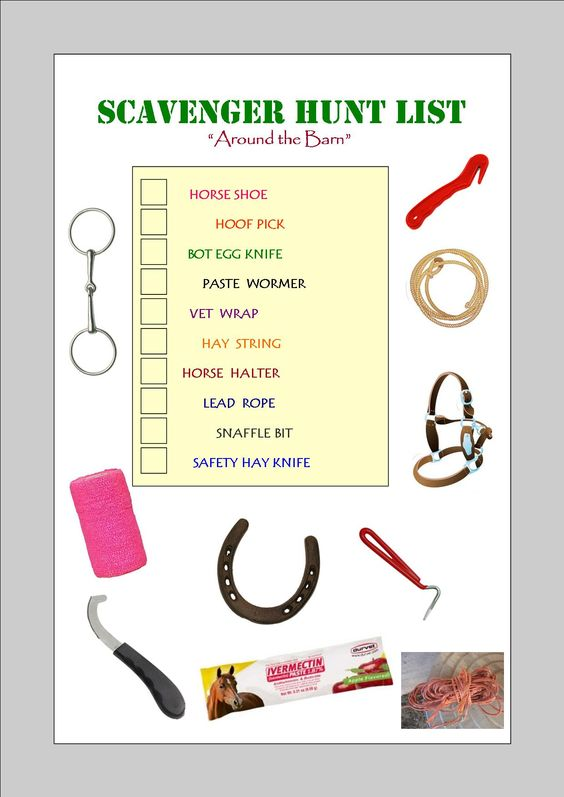 My own personal favorite scavenger hunt list for things around the barn! Great teaching tool and fun too!