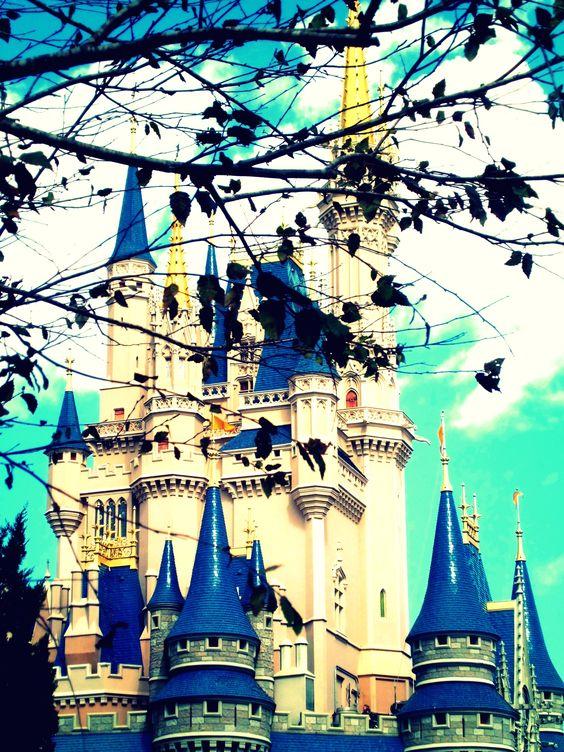 Princess castle in Disney World, Orlando Fl.   *i took :)*