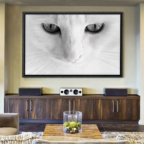 Share The Magic Of Seeing A Subject Up Close And Personal By Featuring Oversized Canvas Art That Captures The Beauty Of Phenomenal Photography Wall Cat Wall Art