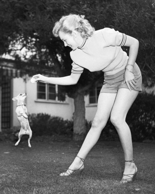 Marilyn playing with her pet Chihuahua Josefa, photographed by Earl Leaf.