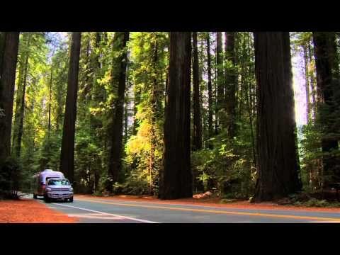 Durch Nordkalifornien zu den Redwoods: Kalifornisches Kaleidoskop