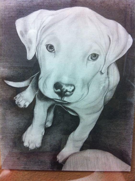 """nightmare"" the pup _ pencil portrait"