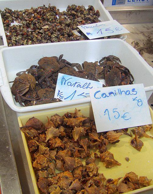 Seafood, Navalheiras, Canilhas , Perceves, Saturday Farmers Market, Loule, Algarve, Portugal