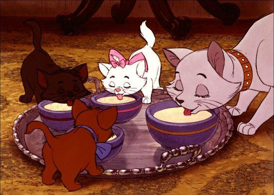 ミルクを飲むダッチェスと子猫
