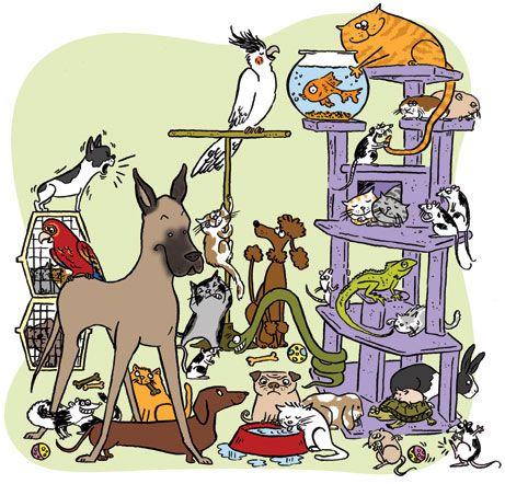 La tienda de mascotas http://www.encuentos.com/cuentos-educativos/la-tienda-de-mascotas-escritores-argentinos-cuentos-infantiles-con-audio-pagina-de-cuentos/