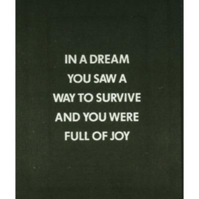 jenny holzer—in a dream you saw a way…from the survival series