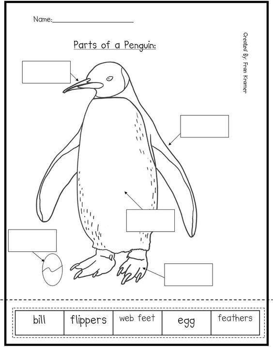 math worksheet : kindergarten crayons here are some penguin activities for  : Parts Of A Book Worksheet Kindergarten