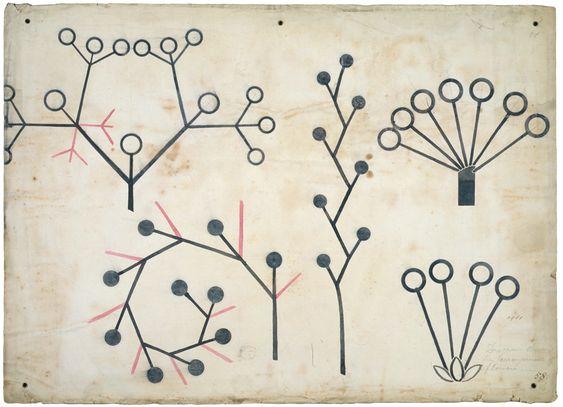 Christopher Dresser, Botanical lecture diagram, ca.1855.
