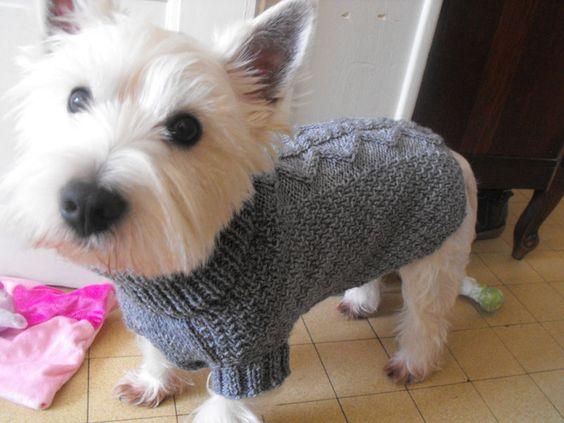 patron tricot manteau chien
