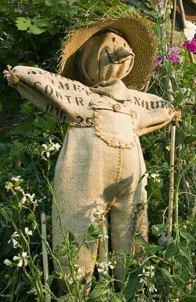 Sweet Nothings: More things to do with BURLAP COFFEE BAGS, cutest scarecrow ever:>)