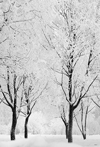 1.5x2.2m Blanc Accumulé Neige couverte Arbre Photographie... https://www.amazon.fr/dp/B01GV28W1E/ref=cm_sw_r_pi_dp_x_ihvlybSCVBXAP