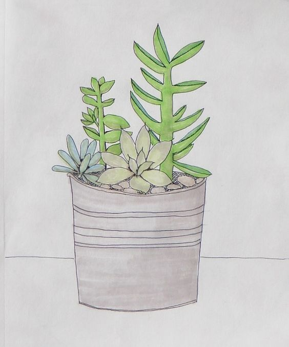 doodle a day ~ day 70, Succulents, Nancy Mills, Five Times Blessed