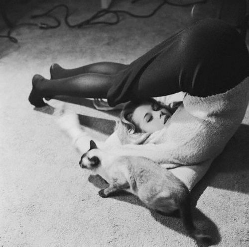 Jane Fonda doing yoga with her cat, 1962 © Genevieve Naylor