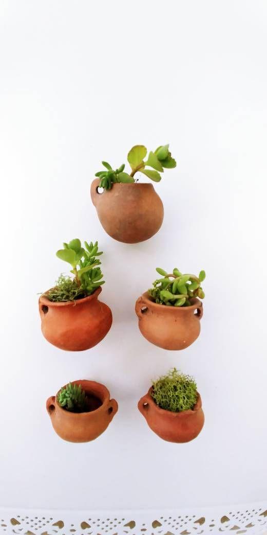 3 Miniature Pots Clay Unique Mini Planter Wall Planter Small Pot Perfect For Air Plants Or Succulents Not Incl Clay Planters Plant Pot Diy Miniature Clay Pots