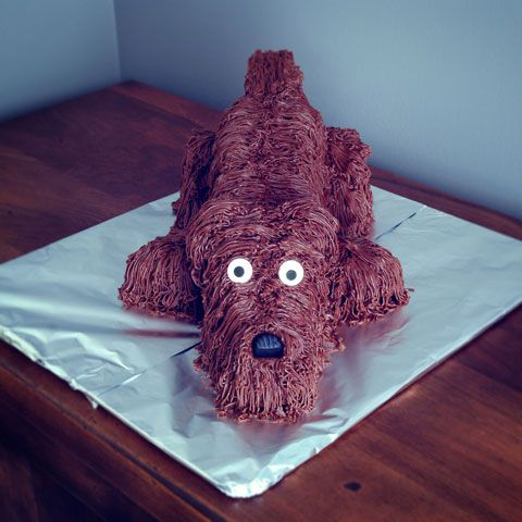 How to Make an Easy 3D Dog Cake Thats Sure to Impress CakeFu Dev