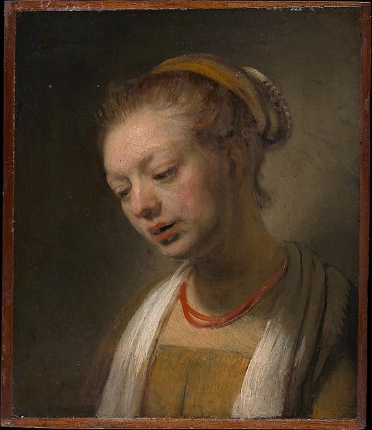 style of rembrandt dutch young woman with a red