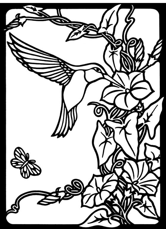 Nature hummingbird image by tharens photobucket a for Coloring pages of hummingbirds
