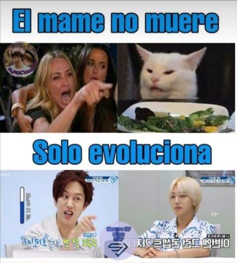 Memes Super Junior Memes De Risa Memes Divertidos Memes