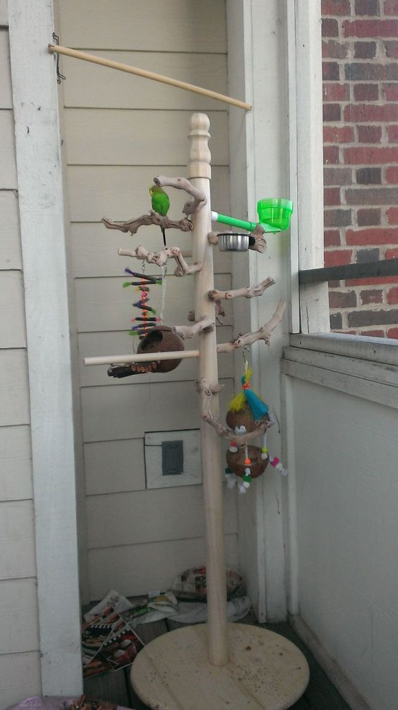 Easy and cheap DIY Play Gym/Stand - Talk Budgies Forums (old hall tree coat rack)