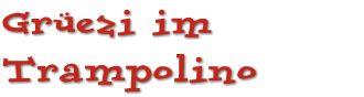 Trampolino Dietikon  also in Dietikon  Starbie Spielhalle  Riedstrasse 3  http://www.starbie.ch/index2.html