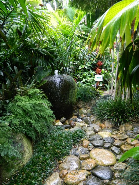 gardens  tropical gardens and backyards on pinterest