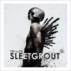Sleetgrout - This Light