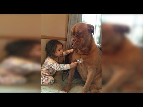 Cute Babies Doctor Take Care Dogs So Sweet Funny Dog And Baby
