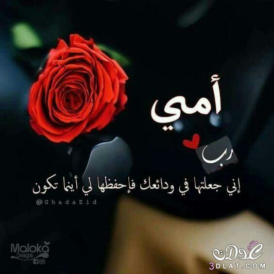 Pin By Nourita Nour On Islam I Love My Hubby Arabic Quotes Love Words