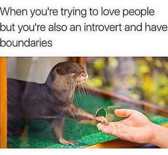 52 Memes People Who Are Socially Awkward Will Feel On A Deep