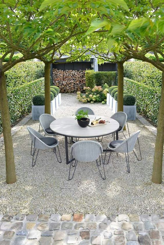 gravel garden w/ umbrella pruned trees
