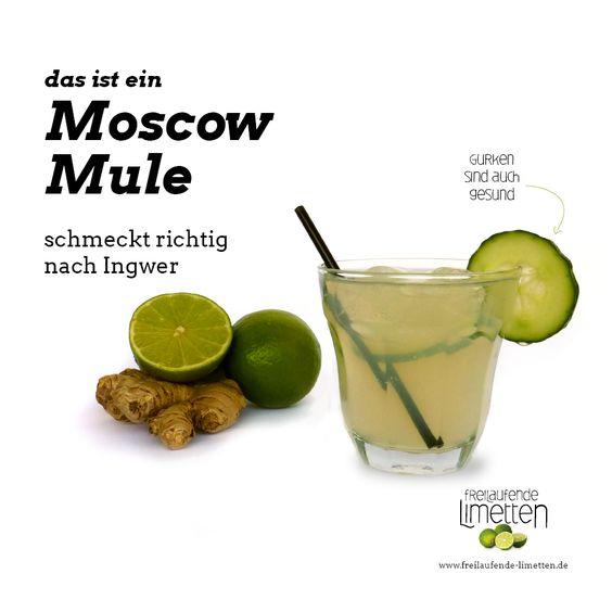 das ist der Moscow Mule von freilaufende Limetten.