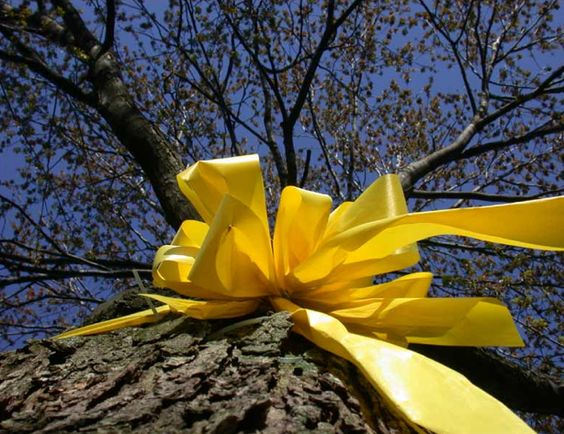 Yellow Ribbons - Iran Hostage Crisis